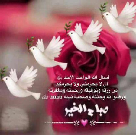 صورة كلام عن صباح الخير , بالصور احلى كلام لصباح الخير