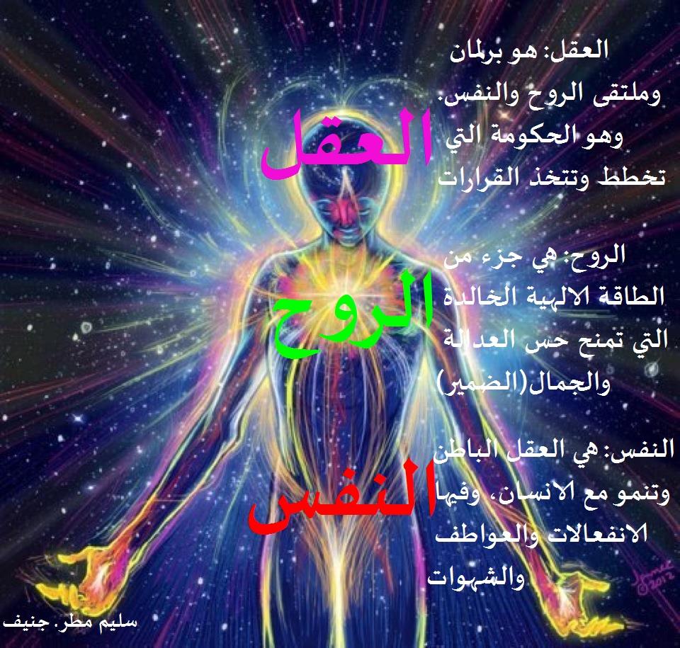 الفرق بين النفس والروح هل من فرق بين الروح والنفس شوق وغزل
