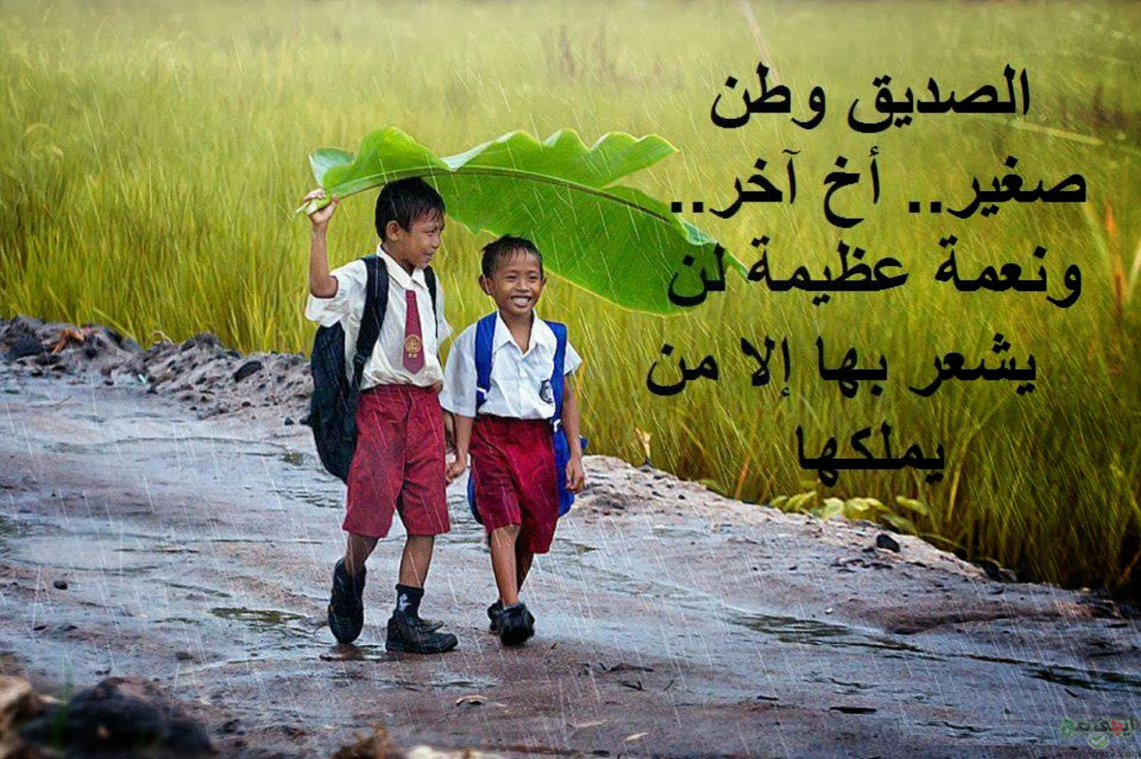 صورة اجمل كلام عن الصديق , بالصور اجمل كلام عن الصديق