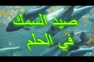 صور تفسير حلم السمك المطبوخ , معني رؤيه السمك المطبوخ في المنام