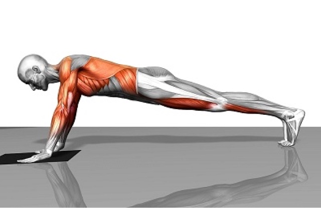صورة تمارين بوش اب , فوائده تمارين الضغط لجسم الانسان