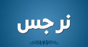 صورة اسماء بنات بحرف النون 2019 , اسماء بنات مميزه