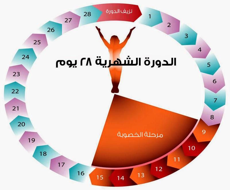 صور كيف احسب الدورة الشهرية القادمة , حساب موعد الدوره الشهريه