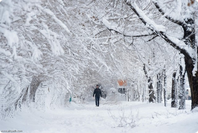 صور رؤية الثلج في الحلم , تفسير حلم الثلج