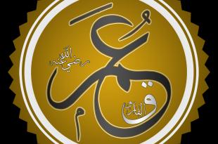 صور رسالة عمر بن الخطاب الى عمرو بن العاص , رسالة نادرة من قديم الزمن