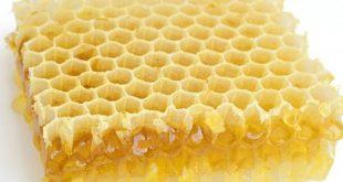 صور فوائد اكل شمع العسل , هل شمع العسل يؤكل وما هى فوائدة واضرارة؟
