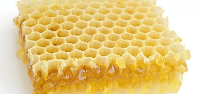 صورة فوائد اكل شمع العسل , هل شمع العسل يؤكل وما هى فوائدة واضرارة؟