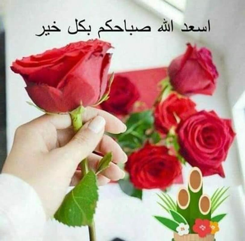 صور صباح الخير من قلبن صباحه , اجمل الاغاني اليمنيه