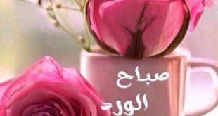 صور صباح الفل والياسمين حبيبتي , رسايل صباحيه رومانسيه