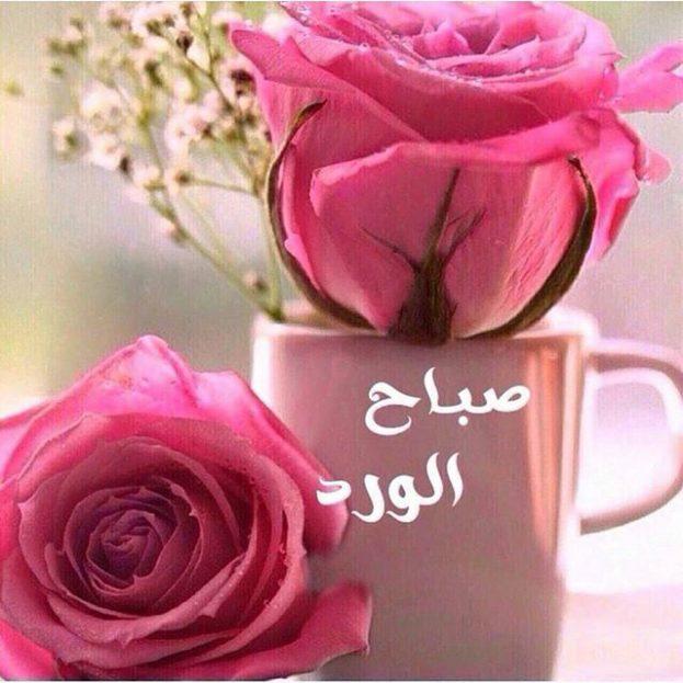 صورة صباح الفل والياسمين حبيبتي , رسايل صباحيه رومانسيه