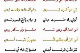 صورة قصائد في حب مصر , كلام جميل في حب مصر