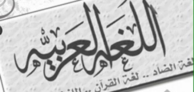 صور كلمة عن اللغة العربية , عبارات قصيره عن اللغه العربيه