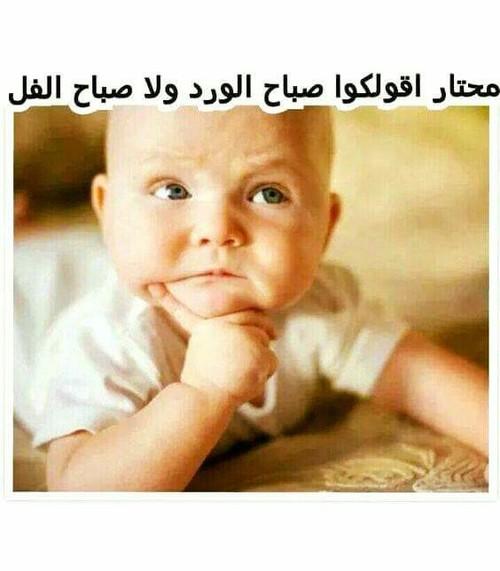 صورة بوستات صباح الخير مضحكه , تحيات صباحيه كوميديه