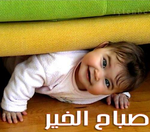 صباح الخير مضحكة احلى صباح