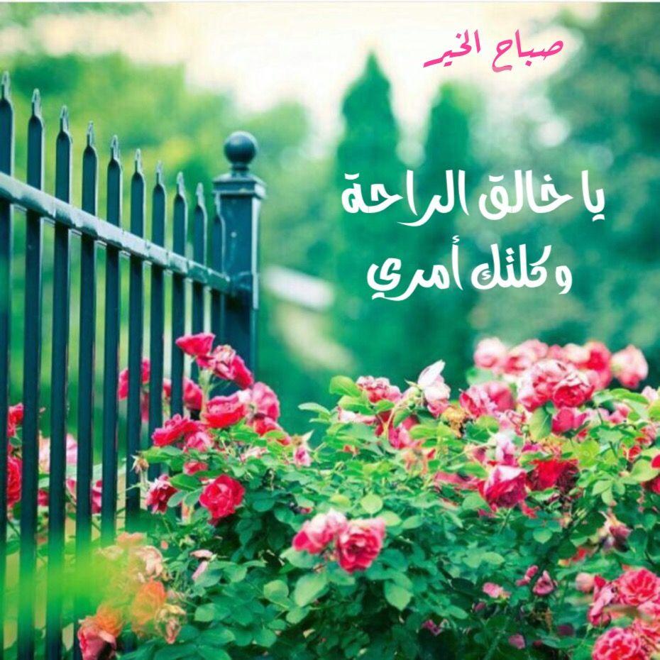 صورة كلام لصباح الخير , عبارات صباحيه جميله