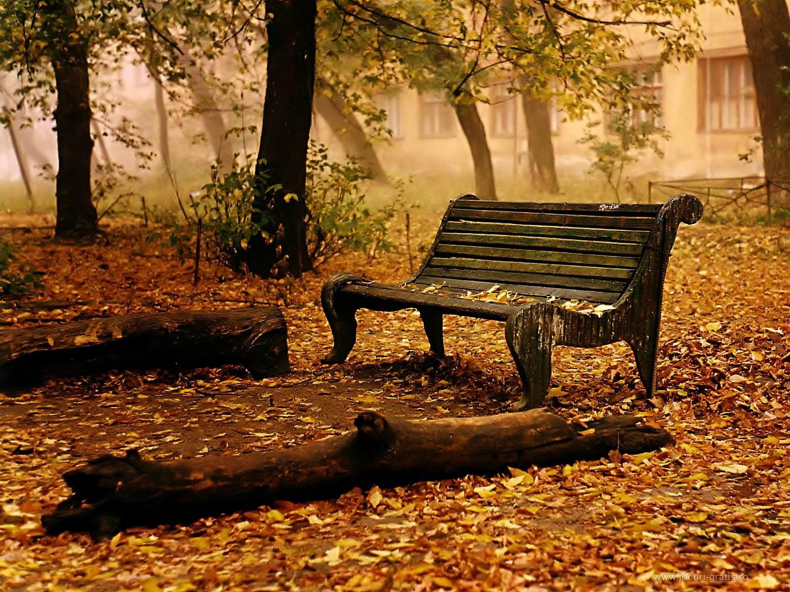 صور اجمل ما قيل في الخريف , اقوال وعبارات عن الخريف