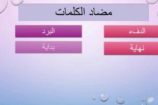 صورة مضاد الكلمات في اللغة العربية , الكلمه و عكسها في العربيه