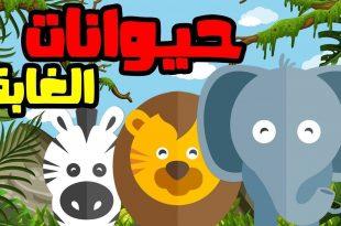 صورة قصص عن الحيوانات , حكايات حيوانات الغابه للاطفال