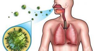 صور الجهاز التنفسي العلوي , مشاكل الجهاز التنفسى اسبابه وعلاجها ؟