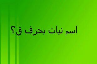 صورة اسم بنت حرف ق , اسماء بنات حديثه تبدا بحرف القاف