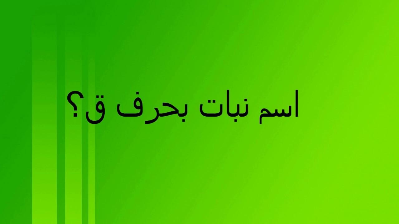 صور اسم بنت حرف ق , اسماء بنات حديثه تبدا بحرف القاف