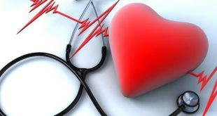 صور اسباب تزايد ضربات القلب , صحة القلب تظهر من ضرباته