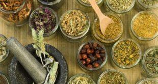 صور العلاج بالاعشاب الطبيعية , سحر الاعشاب في الوقاية والشفاء