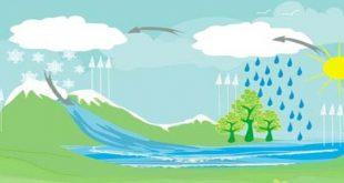 صورة دورة الماء في الطبيعة , مراحل حركة المياة على الارض