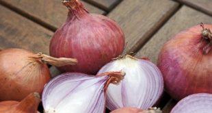 صورة فوائد البصل المشوي لمرضى السكر , هل يعالج البصل مرضى السكر؟