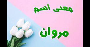صورة معنى اسم مروان في اللغة العربية , افضل تفسير لاسم مروان