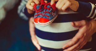صورة متى يبدا الحمل , اول طور للجنين