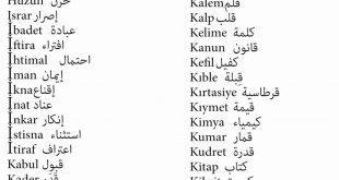 صورة اشهر الكلمات التركية , تعلم اللغة التركية بكل سهولة 2486 6 310x165