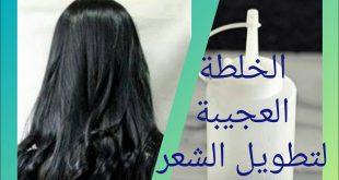 صورة الخلطة العجيبة للشعر , خلطه لحل كل مشاكل الشعر