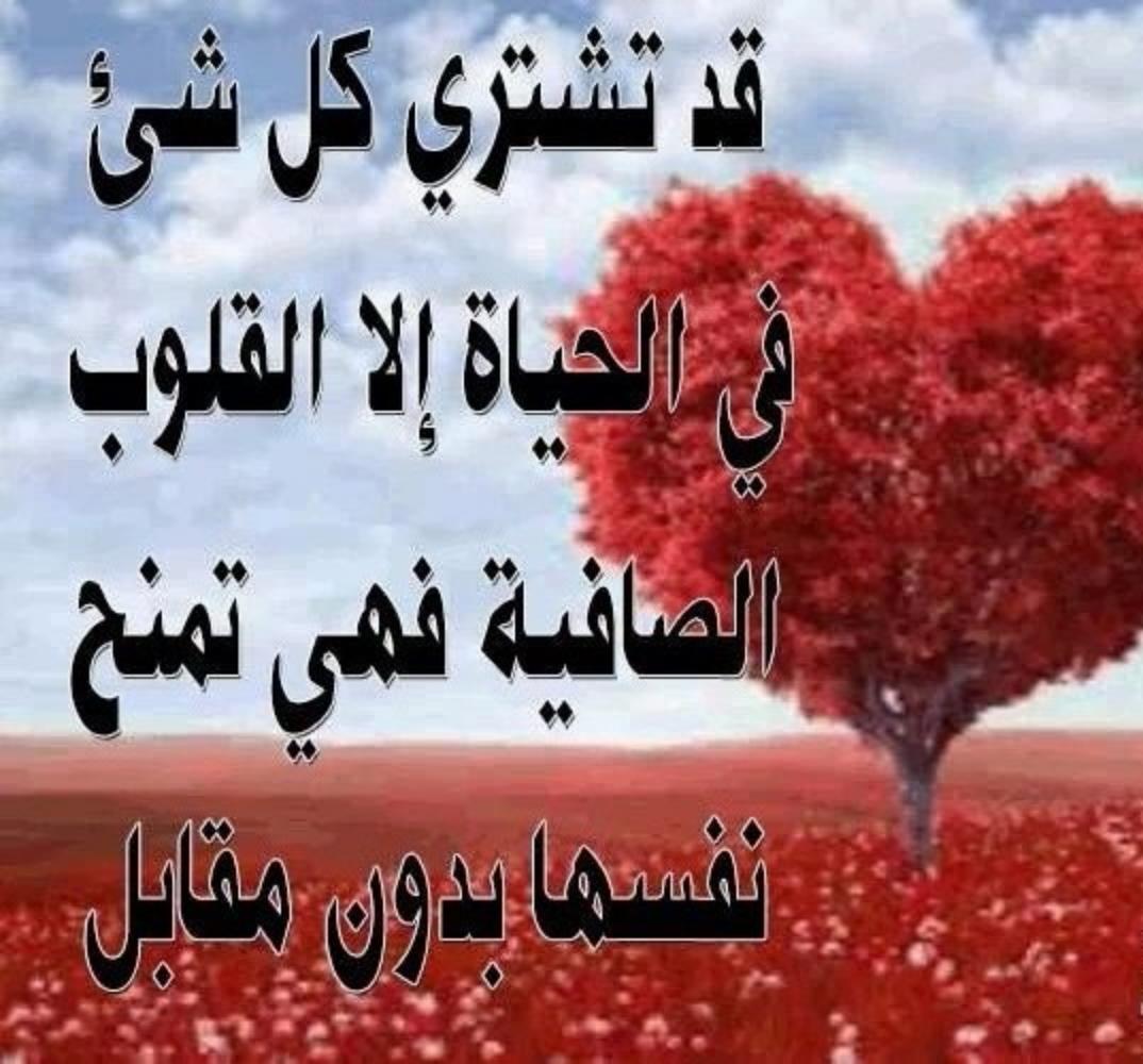 صورة رسائل الحب قصيرة , اقصر رسائل صباحيه محبه 5753 7