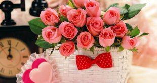 صورة صور اهداء ورد , الورود وتعبير اجمل بها وباهدائها