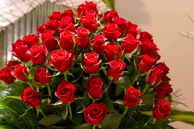 صورة صور ورود،بطاقات رومانسيه من الورود