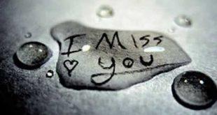 صورة معنى i miss you،ترجمه l miss you في المعجم