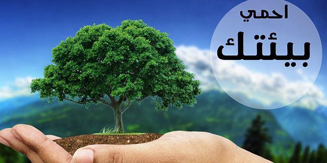 صورة مقال عن البيئة،موضوع تعبير عن البيئه و تاثيرها علي الانسان