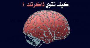 صورة اشياء تقوي الذاكره , اكلات و علاجات لتقويه الذاكره
