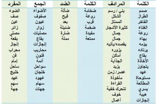 صورة معاني كلمات اللغة العربية،كلمات عربيه قديمه مجهوله المعني