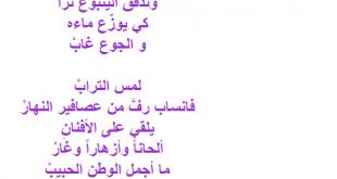 صورة قصيده عن الفلاح مكتوبه،شعر احمد شوقي للفلاح